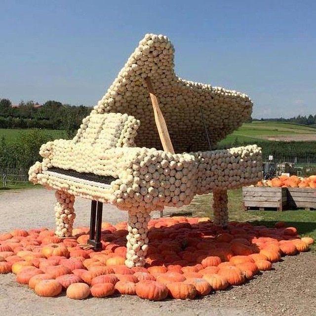 Atelier Land Art : Piano végétal |